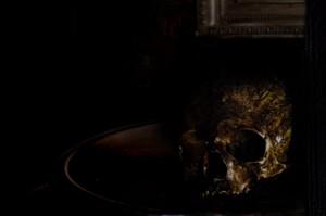 the skull revealed...